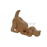 Bild von Spaarpot Hond beukenhout