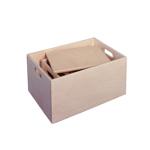 Afbeeldingen van Sjouwkist-speelgoedopbergkist (vingerveilig) 50 x 35 x 24,5 cm zonder wielen Van Dijk Toys
